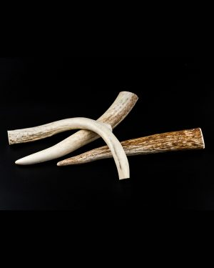 medium antlers - dog chew | Smilin' Dog Bakery, LLC.