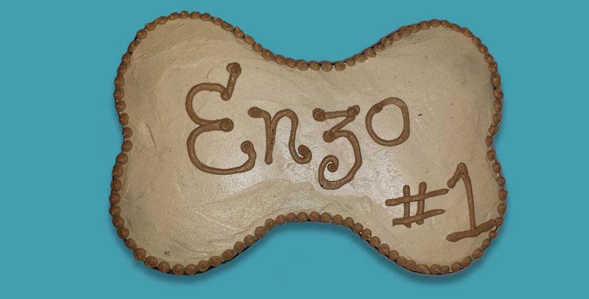 custom canine birthday cake for Enzo's 1st birthday | Smilin' Dog Bakery, LLC.