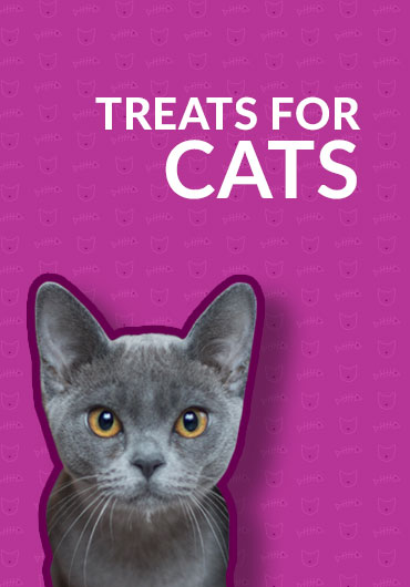 treats for cats | Smilin' Dog Bakery, LLC.